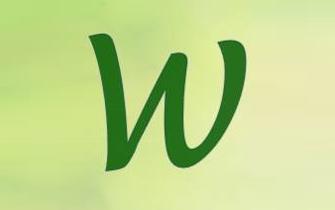 Wisebrand PR Consulting